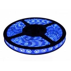 Tira Led 2835 Azul Exterior